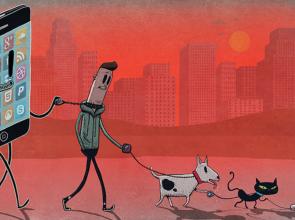 Жизнь со смартфоном и без: польза, зависимость и вред для человека